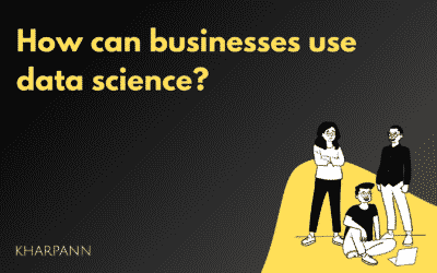 How can businesses use data science?